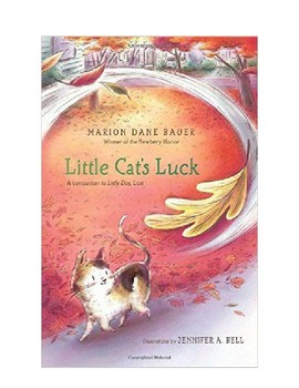 Little Cat's Luck Trivia Questions