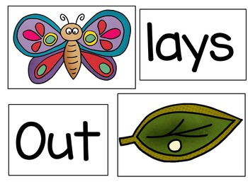 Little Caterpillar (A Butterfly/Caterpillar Life Cycle Pocket Chart Activity)