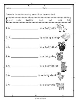 Little Duckling is Lost by May Nelson, Guided Reading Lesson Plan, Level C
