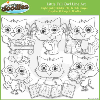 Little Fall Owl