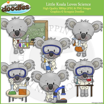 Little Koala Loves Science
