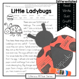 Ladybugs - Compound Words - Literacy and Craft