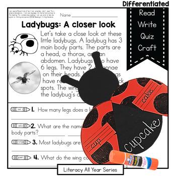 Power Passages {Little Ladybugs} and Compound Words mini unit