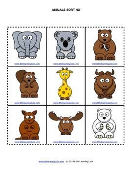 Little Learning Labs - Animals Sorting Activity