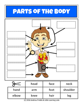 Little Learning Labs - Parts of the Body - Anatomy Worksheet Set Primary Grades