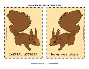 Little Learning Labs - Squirrel Acorn Sorting Activity - Sorting Letters