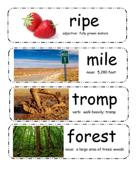 Little Mouse, The Red Ripe Strawberry, & The Big Hungry Bear Vocabulary Cards
