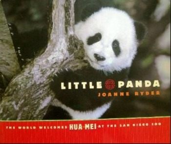 Little Panda Amazing Words PPT