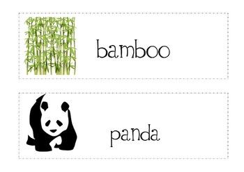 Little Panda Write-The-Room (Reading Street 3.1)