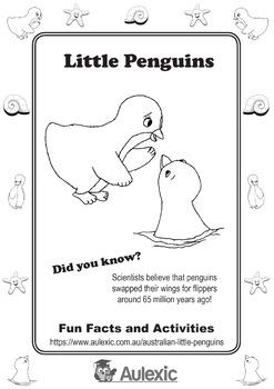Little Penguins Activity Book