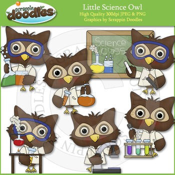 Little Science Owl