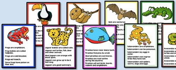 Rainforest Animals Writing - Non-fiction Literacy Centers