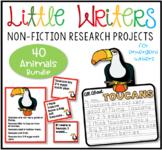 Little Writers Series: BUNDLE 1 (Sealife, African, Rainforest)