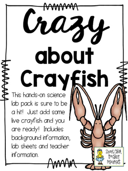 Crazy about Crayfish - Live Crawdad Investigations and Information