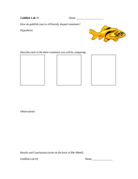 Live Goldfish Observation Labs