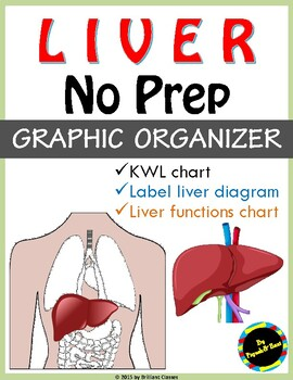 Liver Graphic Organizer: KWL chart / label the Diagram / Functions Chart
