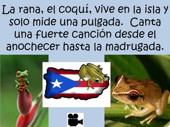 Livin' La Vida Latina - Fun Facts about the Caribbean in Spanish