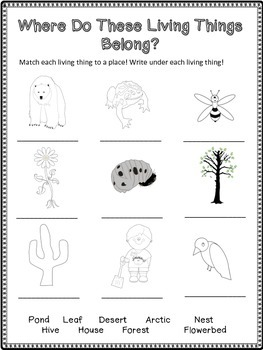 Living And Nonliving Things, FREE ONE ACTIVITY from Full Pack