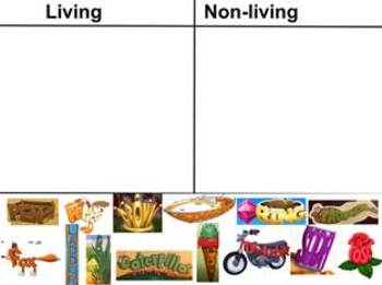 Living & Non-Living #2