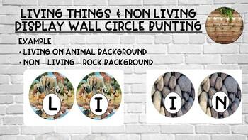 Living & Non Living display wall circle bunting - matching background
