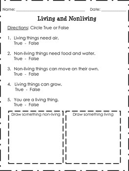 Living And Nonliving Worksheet True False Questions By
