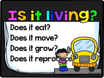 Living & Non-living Sort