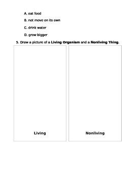Living, Nonliving Assessment