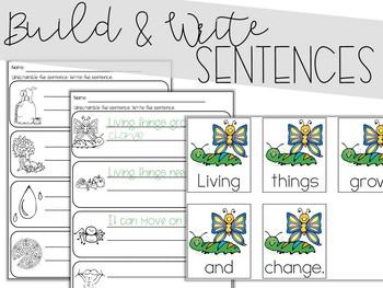 Living & Nonliving Scrambled Sentences