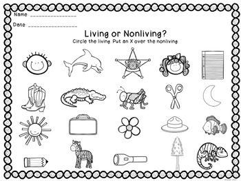 Living/Nonliving Sort and Activities