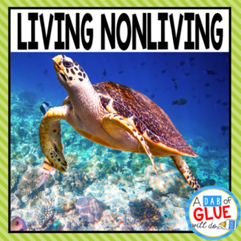 Living Nonliving Things