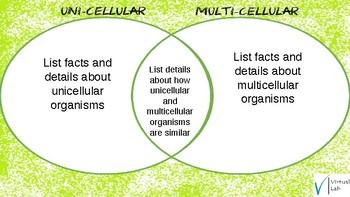 Living Organisms- Cells