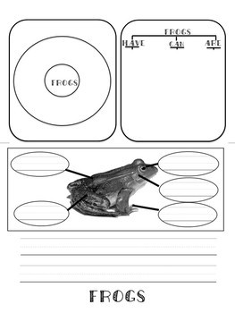 Living Organisms Flip-Book : Goldfish,Chickens, and Frogs { FREEBIE }