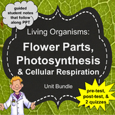 Living Organisms Unit: Flower Parts, Photosynthesis, Respi