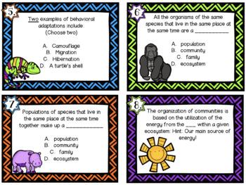 Living System Task Cards