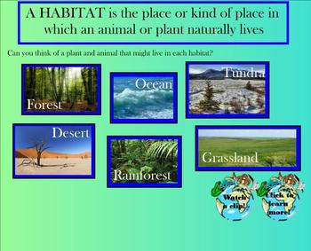 Living Systems SMARTboard Lesson - Animals/Ecosystems - Interactive!