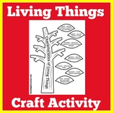 Living Things Needs | Living Things Need Activity