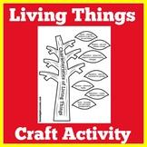 Living Things | Kindergarten 1st 2nd Grade | Characteristi