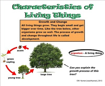 Living Things - A Third Grade Smartboard Introduction