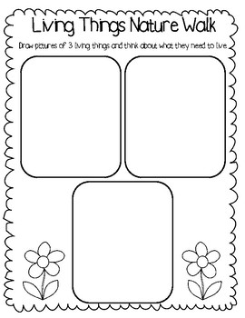 Living Things Activity