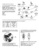 Living Things / Cells Living Environment Regents Review