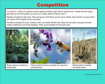 Living Things, Competition, and Adaptations - A Third Grade SmartBoard Intro