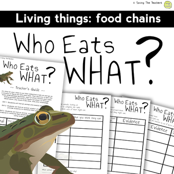 Living Things: Food Chains - Who Eats What? FREEBIE