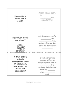 Living Things Need Each Other Differentiated/Quick Version- Science Notebook