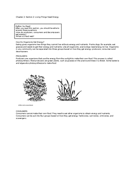 Ecology Reading Notes Packet: Living Things Need Energy by Ashley ...