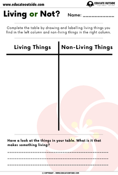 Living Things Outdoor Activity: Living or Not?