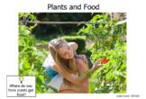 Living Things-Plants-Level C
