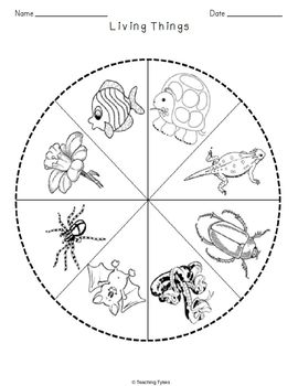 Living Things Science Crossword Puzzle Coloring Worksheet Middle School
