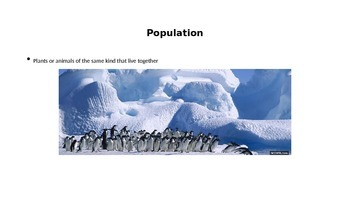 Living Things Vocabulary PowerPoint