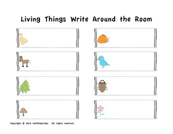 Living Things Write Around the Room
