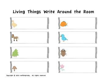 Living Things Write Around the Room
